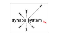 Logo Synaps System