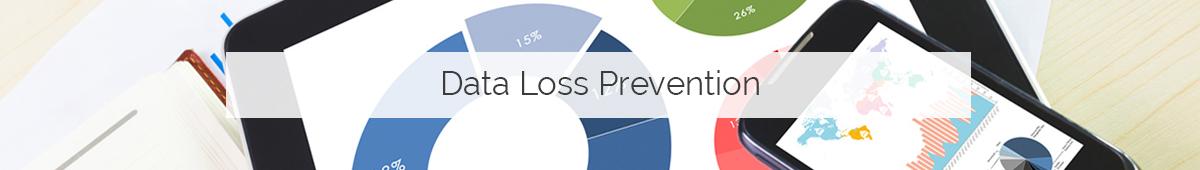 data loss prevention DLP Cerberis